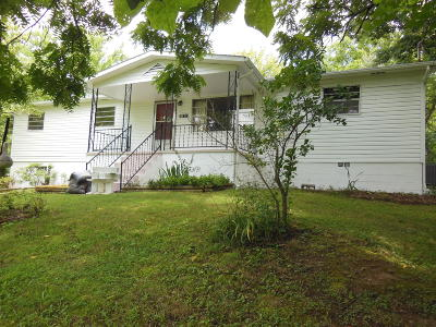 Strawberry Plains Single Family Home For Sale: 9711 Smoky Row Rd