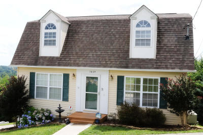Knoxville Single Family Home For Sale: 1429 Dick Lonas Rd