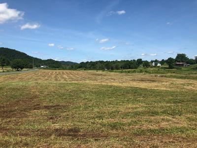 Rogersville Residential Lots & Land For Sale: 00 Hickory Cove Rd