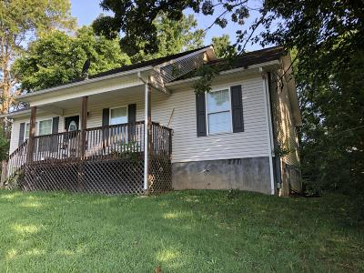 Blount County, Loudon County, Monroe County Single Family Home For Sale: 123 Finley Drive
