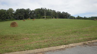 Tazewell Residential Lots & Land For Sale: L 20 Elaine Drive