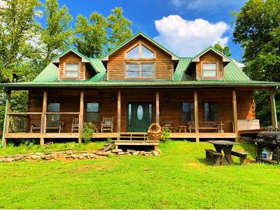 Cocke County Single Family Home For Sale: 351 Joy Way