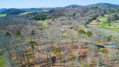 Knox County Residential Lots & Land For Sale: 2604 Bella Vista Lane