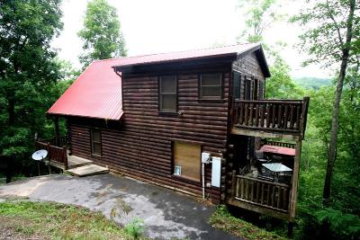 Pigeon Forge Single Family Home For Sale: 824 Mill Creek Rd
