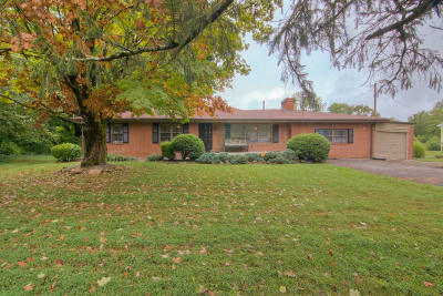 Knoxville Single Family Home For Sale: 1317 Dartmouth Rd