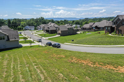 Maryville Residential Lots & Land For Sale: 643 Karch Drive