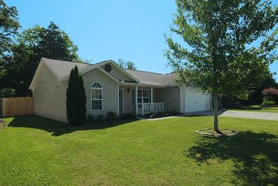 Knoxville Single Family Home For Sale: 8018 Cold Stream Lane