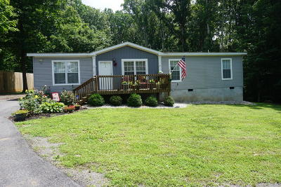 Strawberry Plains Single Family Home For Sale: 126 Laura Boling Loop Rd