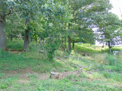 Cocke County Residential Lots & Land For Sale: Edwina Bridgeport Rd