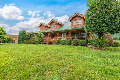 Sevierville Single Family Home For Sale: 3114 J.h. Headrick Drive
