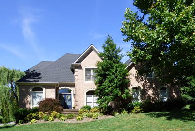 Knoxville Single Family Home For Sale: 9001 Hemingway Grove Circle