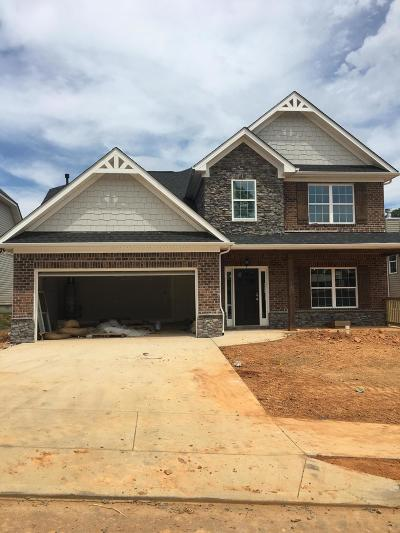 Knoxville Single Family Home For Sale: 940 Festival Lane