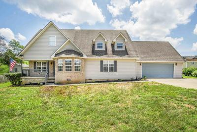 Sevierville Single Family Home For Sale: 1347 Korey Blvd