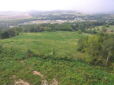 New Market Residential Lots & Land For Sale: 1756 Quarry Rd