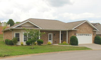 Sevierville Single Family Home For Sale: 2112 Zion Drive