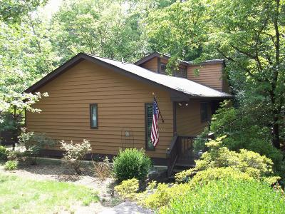 Knoxville Single Family Home For Sale: 7333 Wildwood Court