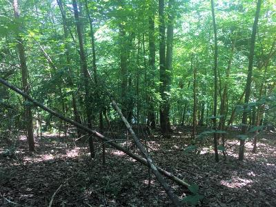Residential Lots & Land For Sale: Lot 26 Indian Shadows Dr.