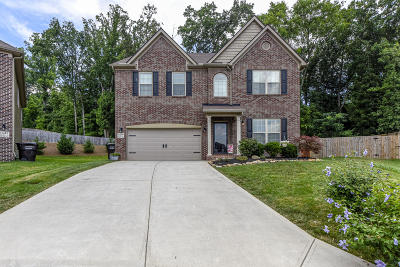 Knoxville Single Family Home For Sale: 3446 Greentree Lane