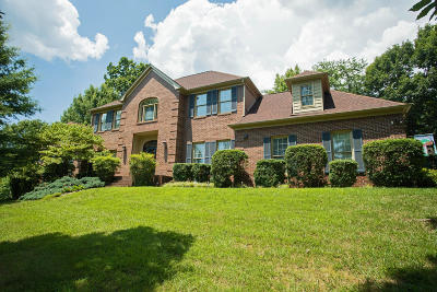 Knoxville Single Family Home For Sale: 10617 Summit Forest Court