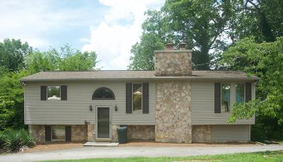 New Tazewell Single Family Home For Sale: 122 Circle Point Drive
