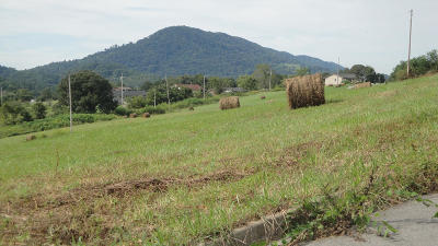 Tazewell Residential Lots & Land For Sale: L 12 Elaine Drive