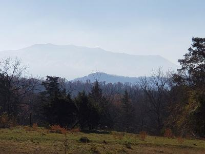 Sevier County Residential Lots & Land For Sale: 327 Happy Hollow Lane