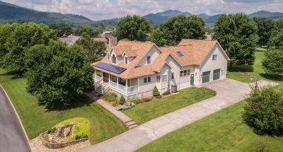 Sevierville Single Family Home For Sale: 3529 Deer Field Circle