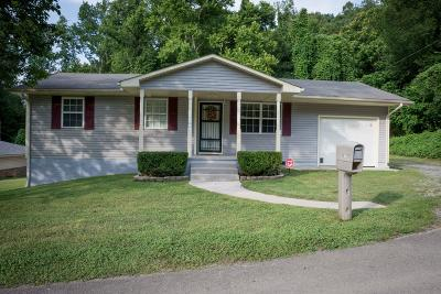 Anderson County Single Family Home For Sale: 117 Green Lane