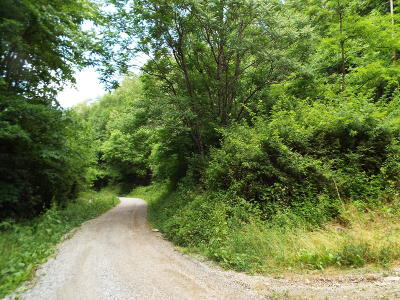 Cocke County Residential Lots & Land For Sale: Johns Creek Rd