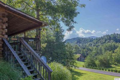 Sevierville Single Family Home For Sale: 3960 Millers Ridge Way
