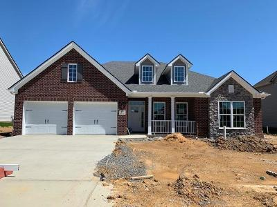 Blount County Single Family Home For Sale: 908 Brookwood Lane