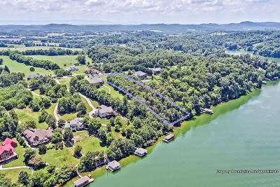 Friendsville, Greenback, Maryville Residential Lots & Land For Sale: 120 Bluffton Rd