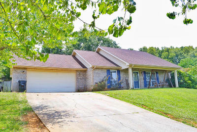 Blount County Single Family Home For Sale: 4426 Smedley D Butler Drive