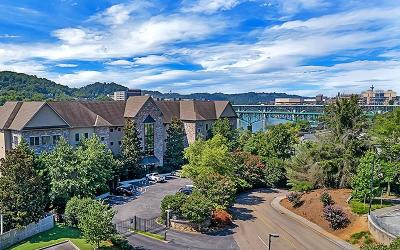 Knoxville Condo/Townhouse For Sale: 850 Volunteer Landing Lane #Unit 103