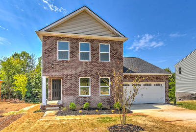 Blount County Single Family Home For Sale: 927 Spring Creek St