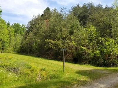 Sevier County Residential Lots & Land For Sale: Amis Way