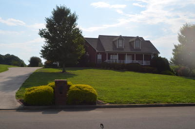 Blount County Single Family Home For Sale: 773 Longview Drive