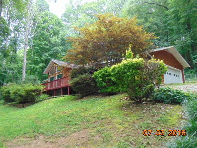 Oliver Springs Single Family Home For Sale: 766 Poplar Creek Rd