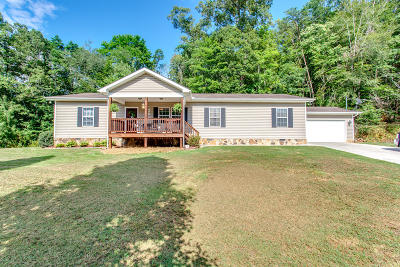 Union County Single Family Home For Sale: 6522 Maynardville Hwy