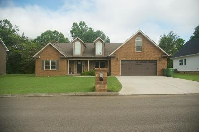 Knoxville Single Family Home For Sale: 6245 Mountain Rise Drive Drive