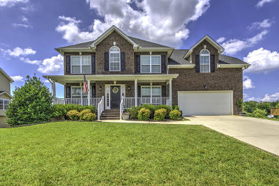 Maryville Single Family Home For Sale: 1047 Wilder Chapel Lane