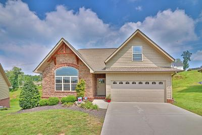 Knoxville Single Family Home For Sale: 8337 Shoregate Lane