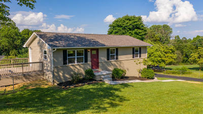 Corryton Single Family Home For Sale: 6212 Renee Rd