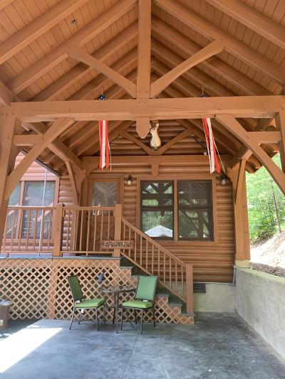 Townsend Single Family Home For Sale: 1315 Rocky Top Way