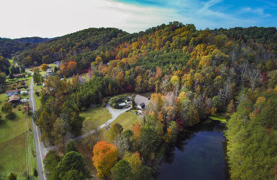 Blount County Single Family Home For Sale: 542 Butler Mill Rd