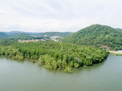 Thorn Hill TN Residential Lots & Land For Sale: $199,900
