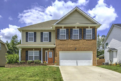 Knoxville Single Family Home For Sale: 6121 Evening Star Lane