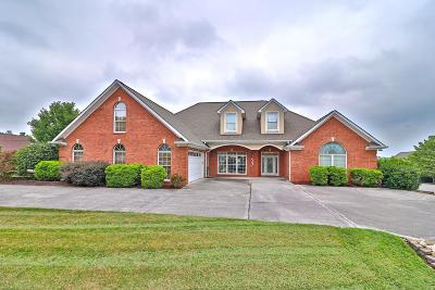 Lenoir City Single Family Home For Sale: 210 Oak Chase Blvd