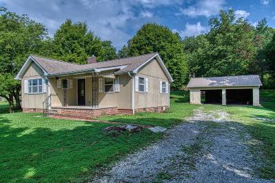 Knoxville Single Family Home For Sale: 821 Deaderick Rd