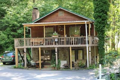Sevierville Single Family Home For Sale: 2236 Cove Creek Drive